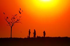 (Luz Adriana Villa A.) Tags: sunset canon de atardecer is colombia cartagena indias a650 luza 10faves a650is luzavilla