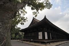 Kyoto 2008 - 三十三間堂(8)