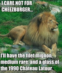 I care not for Cheezburger