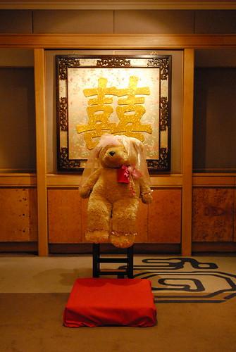 Teddy~DSC_6531