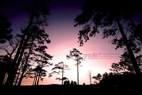 PhuKraDuang Thailand