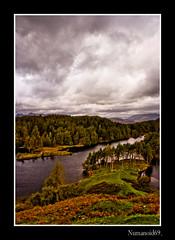 Tarn Hows. (numanoid69) Tags: uk autumn trees england lake mountains nationalpark heather lakedistrict cumbria bracken tarn tarnhows prideofengland