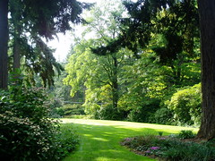 Lawn at Dunn Garden