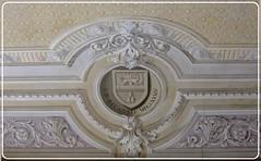 Biblioteca Marciana - Sala Bessarione, soffitto