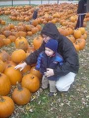 2008.10.25-Pumpkins.02.jpg