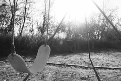 Swinging in the Sun (swichi293) Tags: sunset sun white black grass leaves burlington contrast canon outside outdoors vermont swings swing dslr xsi eyefi