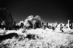 DSIR0892 (Gian Guido Zurli) Tags: italy cemeteries graveyard ir italia infrared tombs tombe cimitero cimiteri infrarossi