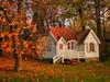 Autumn fantasy (kezwan) Tags: autumn tree göteborg sweden gothenburg fantasy sverige höst 1on1 slottskogen kezwan lovephotography kartpostal clickcamera worldsartgallery