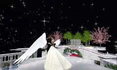 wedding planner bay area