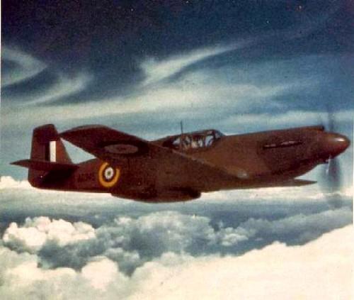 Warbird picture - DMP-D384 A-36 APACHE