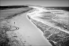 oceanbeach (telmo32) Tags: ocean sf sanfrancisco california blackandwhite bw beach monochrome coast surf explore creativecommons bayarea oceanbeach artcafe blueribbonwinner sigma30mm14 nikond300 damniwishidtakenthat ysplixblack telmo32