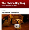 The Obama Dog Blog_1227219411936