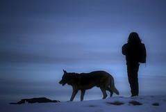 VII - Dona i gos en algun rac del mn proper al cel (Ferran.) Tags: 2 people woman snow nature silhouette nieve dar catalonia gos pyrenees neu ripolles queralbs fontalba somines noesnriapermoltqueflickrsinventillocs