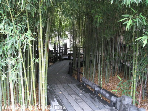 The Huntington Library, Art Collections, and Botanical Gardens (Japanese Garden) (Spring) - San Marino 6