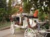 Haunted Mansion Hearse.jpg (Bama4) Tags: california coach disneyland pumpkins hearse hauntedmansion nightmarebeforechristmas neworleanssquare garlands