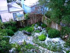 Snow!  December 16, 2008