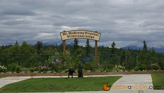 Anchorage and Denali, Alaska