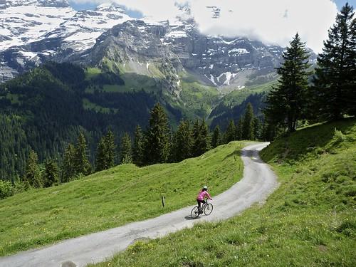 Back road to Col de la Croix