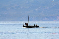Baska - Krk (Alessandra47 D.G.) Tags: sea island boat barca mare hr isola hrvatska baska krk veglia starabaska coazia estremità alessandra47 canoneos1000d
