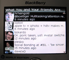 twitterberry friends timeline