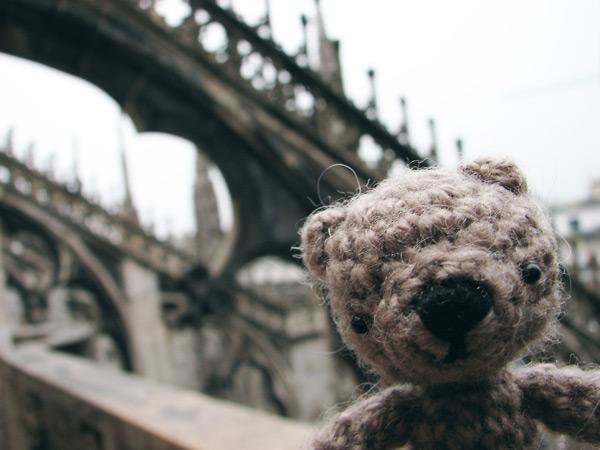 little bear in Milano