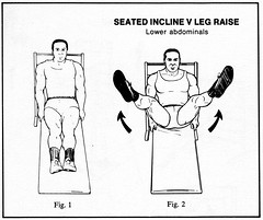 Seated Incline V Leg Raise (explanatorium) Tags: illustration absurd weightlifting infographics