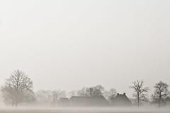 ... ((Erik)) Tags: trees mist bird farm amelisweerd pentaxk20d erikvanhannen markmoetjijnietstuderen