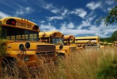 School's Out...Forever (MilkaWay) Tags: sky abandoned grass clouds schoolbus accumulations themoulinrouge firstquality us441 ruralgeorgia laurenscounty bluebirdjunkyard exploremay242008