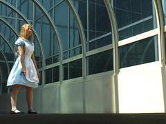 Slightly Lost (mew_pudding) Tags: hearts costume cosplay alice lewis kingdom disney wonderland carrol