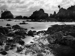 Walkerville beach (fa11ing_away) Tags: blackandwhite bw beach rock sand tonemap