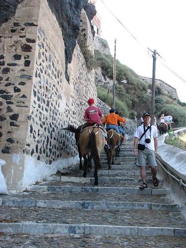 騎著驢道上山的遊客 (1)