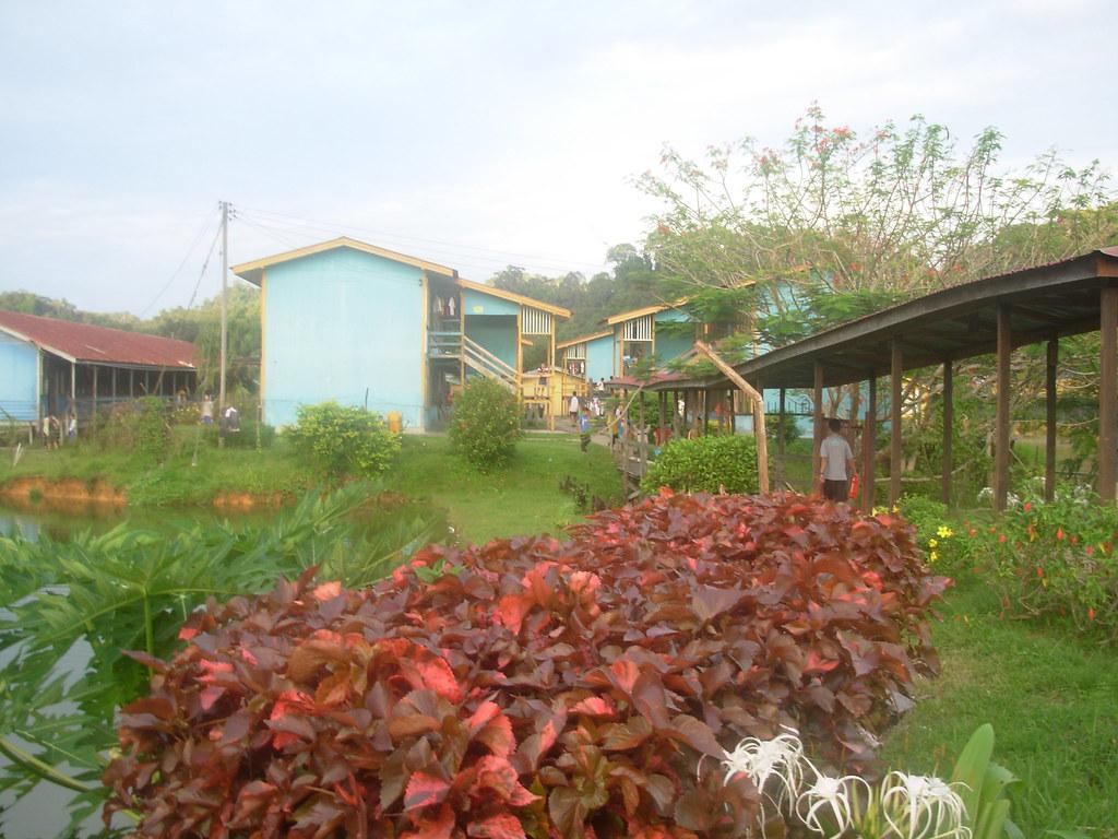 Sarawak-Belaga (356)