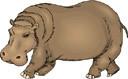 hippo (3doel82) Tags: fish bird animals insect gambar koleksi ikan belajar burung binatang carnivora serangga mamalia amphibi