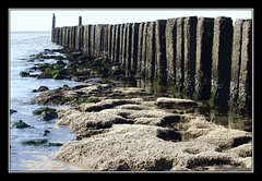 Oostkapelle (Eddy Westveer) Tags: beach strand photoshop fkk cs3 palen nudistbeach oostkapelle naakstrand paalhoofden project366