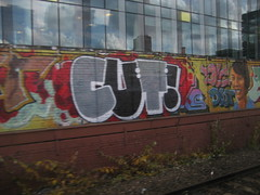 Cut 24 DDS (Tatty Seaside Town) Tags: graffiti graf waterloo hastings trackside dds tattyseasidetown cut24