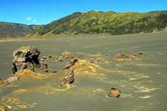 Savana Valconic Rock 02 (The JASS) Tags: park nature indonesia landscape lava java d70s east mount national gunung jawa allah hijau bromo semeru kebesaran tengger seremban muar pemandangan barat tengah trakking valcano ogkl centrel ansara pendaki fmdc jasni
