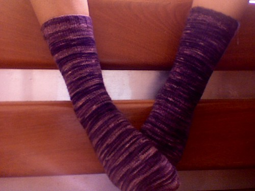 blackthorn socks
