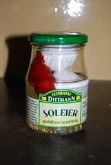 Soleier