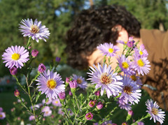 Me behind the asters