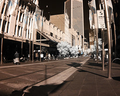 bourke st small (beleobus) Tags: ir 300d infrared