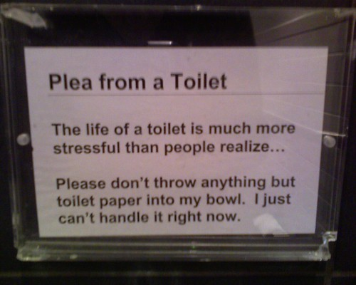 Plea from a Toilet: The life of a toilet is much more stressful than people realize...  Please don't throw anything but toilet paper into my bowl. I just can't handle it right now.