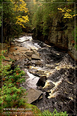 Canyon Falls (darylann) Tags: river canyon falls waterfalls alberta upperpeninsula uppermichigan sturgeonriver northernmichigan canyonfalls absolutemichigan scenicmichigan dailyrayofhope darylannanderson darylannandersonphotography wwwdarylanncom