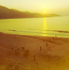 Fishing Village from Guard Tower, DaNang Vietnam (spysgrandson) Tags: sunrise landscape fisherman vietnam southchinasea danang instamatic guardtower sleepymorning spysgrandson