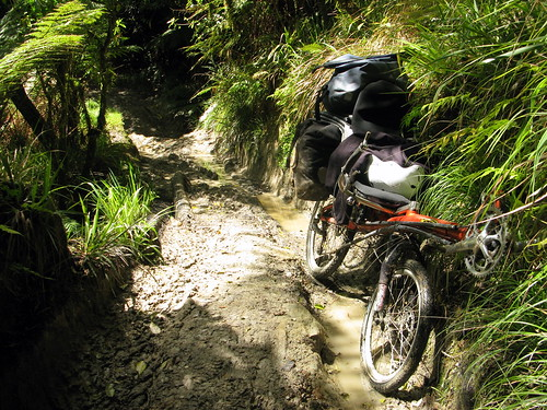 Pushing the bike across the Mangapurua Track from Whakahoro to the Bridge to Nowhere, Whanganui National Park, New Zealand