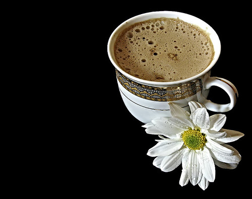 Gönül sohbet ister kahve bahane