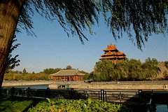 NW (Ian Riley [on the right side of the fence]) Tags: china city beijing forbidden willow moat weeping watchtower salix babylonica
