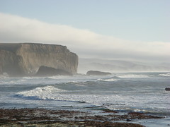 MartinsBeach_2007-024 (Martins Beach, California, United States) Photo
