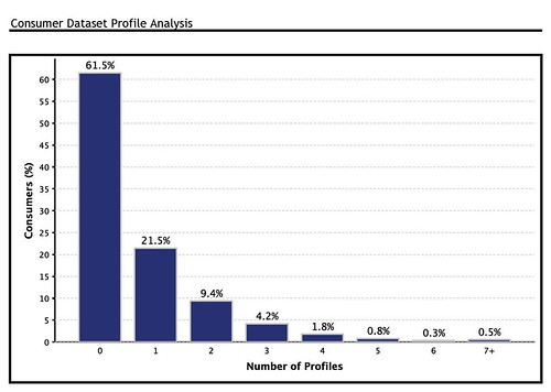 Consumer Dataset Profile Analysis