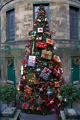 Christmas tree outside The Dome, Edinburgh