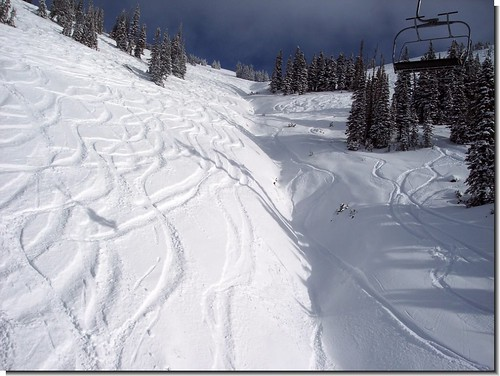 Targhee - December 9, 2008
